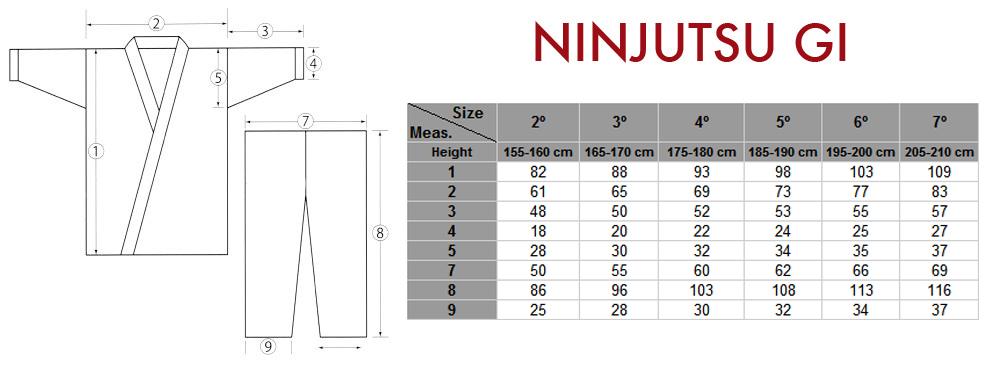 NINJUTSU_1.jpg
